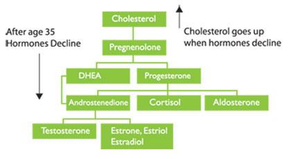 αύξηση-χοληστερόλης-ηλικία