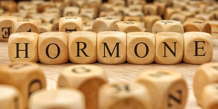 Οι Ορμόνες μας και ο Καρκίνος