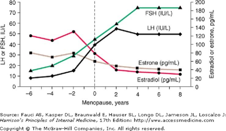 hormones-FSH-LH E2-Progesterone